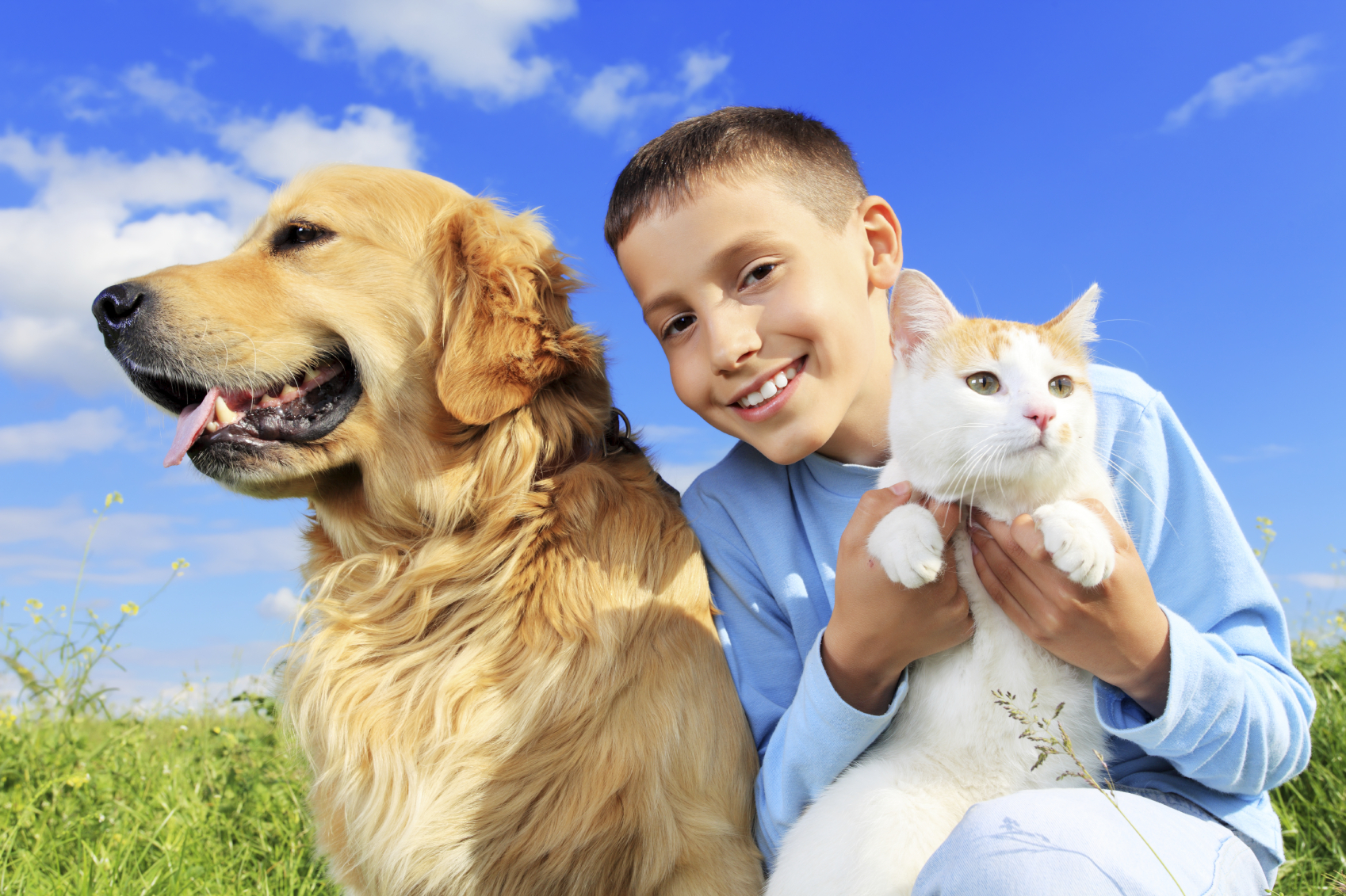 Advantages And Disadvantages Of Having A Pet In Your Home