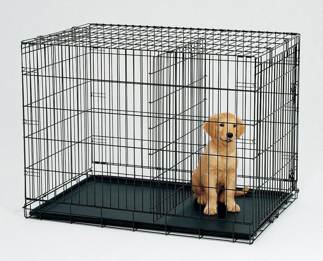 Top Paw Double Door Dog Crate Photos Wall And Door Tinfishclematis